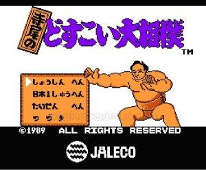 ファミコンソフト 名作 寺尾のどすこい大相撲