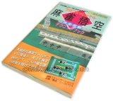 プロフェッショナル 麻雀悟空 完全攻略テクニックブック
